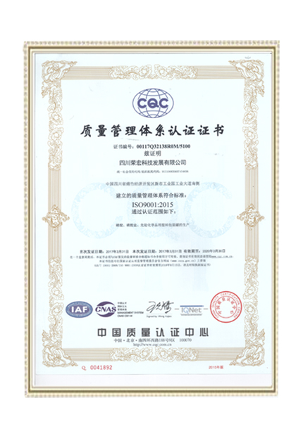 QUALITY SYSTEM--ISO9001-2015